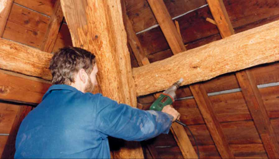 Traitement des bois charpente mérules Vichy (Allier) et Puy de D u00f4me # Traitement Bois Charpente